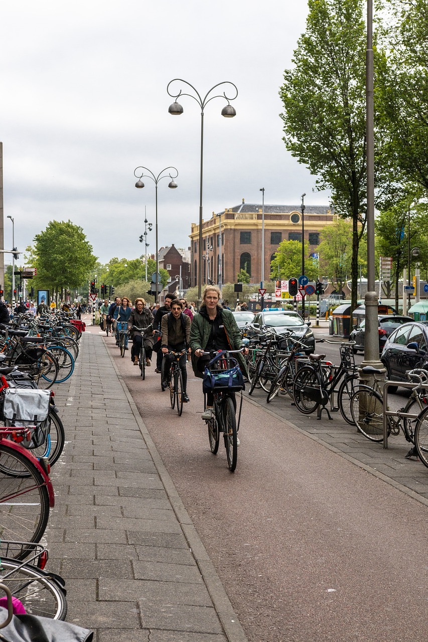 FIeters in Nederland